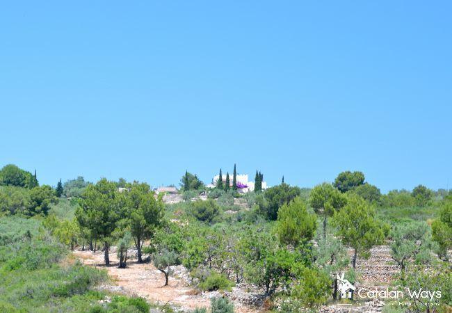 Villa en Ampolla - The Little Castle